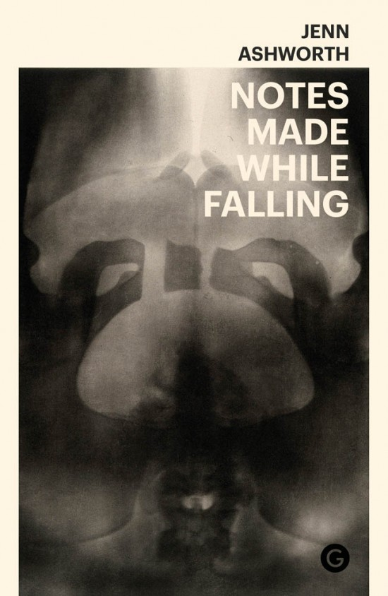notes-made-while-falling-cover-image